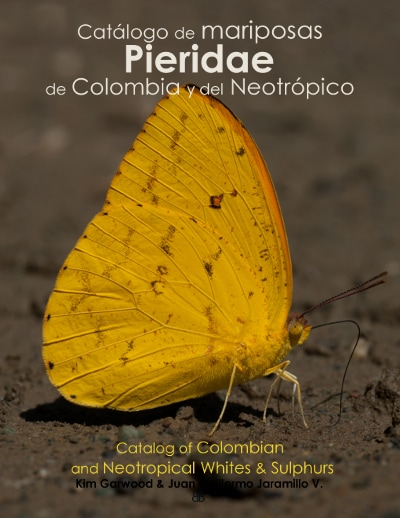 ImagenCover catalog Pieridae Butterfly Family Butterflycatalogs